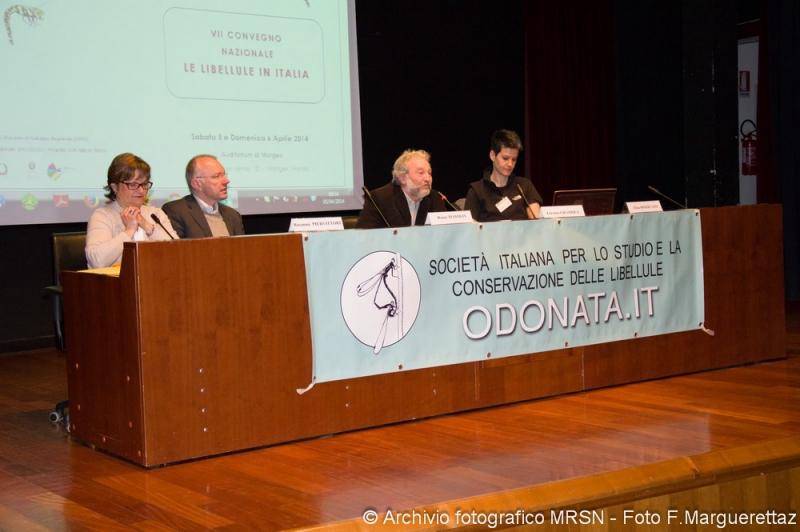 mini-MRSN_VDA_Convegno Odonati_Comune di Morgex_Marguerettaz Fabio_05042014__ (5) - Copia