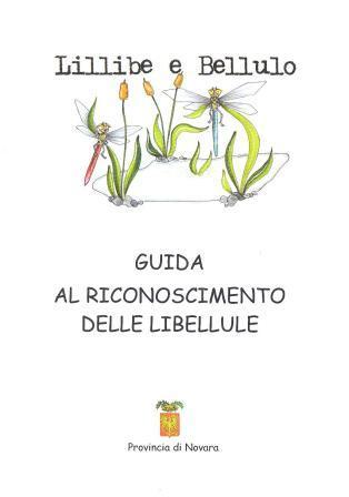 Lillibe_guida