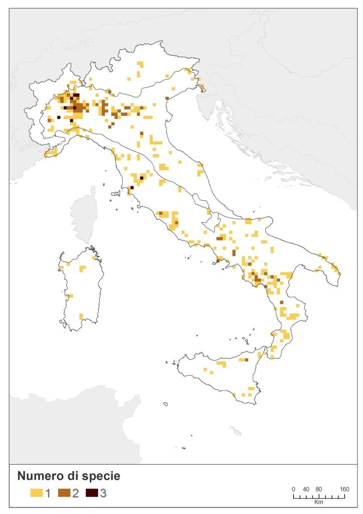 Fig. 3.3.26 distribuzione odonati